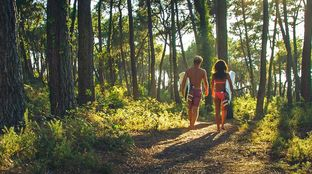 walk to the beach through the forest