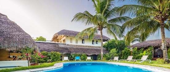 Surf Camp Caribbean palm trees and pool tropics